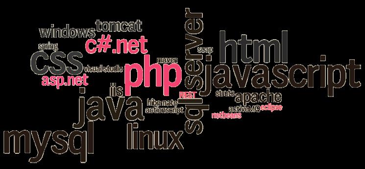 Thiết kế web ở đà nẵng bằng ngôn ngữ gì tốt nhất-2