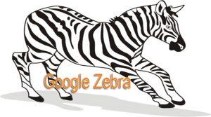 Thuật toán ZEBRA ( ngựa vằn ) nghĩa là gì ?